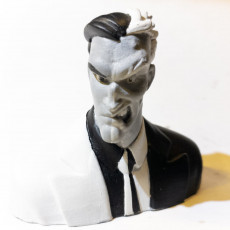 Picture of print of Two Face