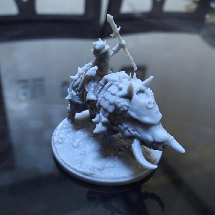 Goblin Boar Rider's Cover