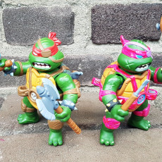 Picture of print of Turtles Fighters