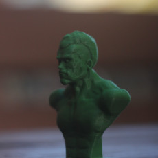 Picture of print of Terminator-t800 bust