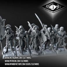 Mummy Warriors