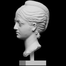 Marble Portrait Head of a Woman