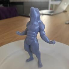 Picture of print of Buff Beluga
