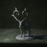 Mutated Forest Stag image