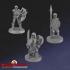 Skeleton Warriors Set 2 image