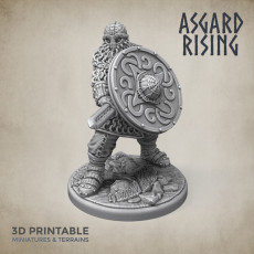 Midgard Shieldmans Vikings Warband