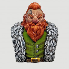 Picture of print of Adventurer Dwarf bust
