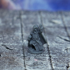 Picture of print of Gnome warlock, Grimbrann.