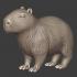Capybara Companions image