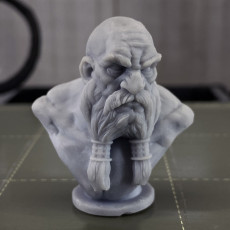 Picture of print of Dwarf Bust