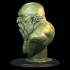 Dwarf Bust image