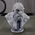 Dwarf Bust print image