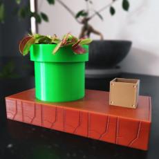 Venus Fly Trap Planter (self watering)