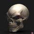 Ghost Rider mask -Danny Ketch - Marvel comics Halloween mask image