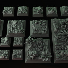 Jungle Square and Round Bases and plants