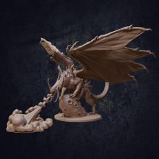 The Elder Void Dragon