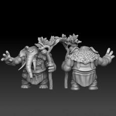 elephant tribal mystic