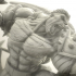 Wicked: The Hulk from Planet Hulk *FREE* image