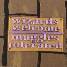 Harry Potter quote 2