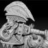 Dwarf Warrior image
