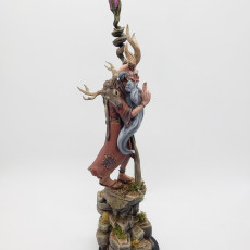 Picture of print of Mosbir, Ciorcal Druid (Pre-Supported)