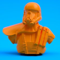 Death Trooper Bust