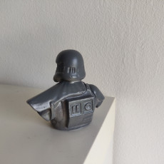 Picture of print of Death Trooper Bust
