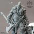 Viking Berserker image