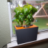 Hydroponic Planter Box (DWC All-In-One) image