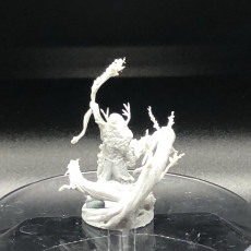 Picture of print of Feral Summoner Druid
