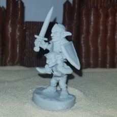 Picture of print of Goblin Knight - Sword N Board