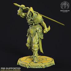 Swordsman (with options)