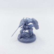 Picture of print of Ariza The Paladin (Pre-Supported)