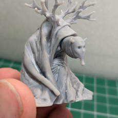 Picture of print of WITCH MUTANT