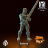 Hero Pack Miniatures image
