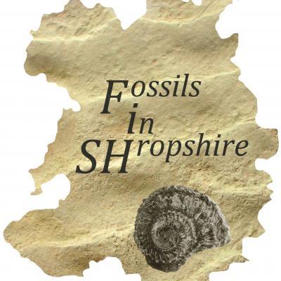 fossilsinshropshire