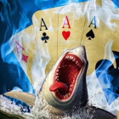 SharkSteps