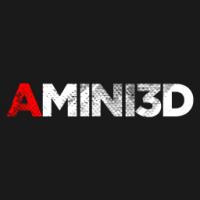 Amini 3D
